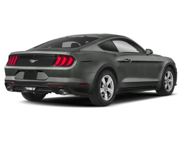 2019 Ford Mustang EcoBoost Fastback