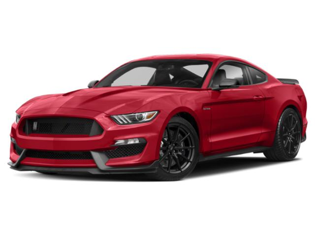 2019 ford mustang Shelby GT350R Fastback