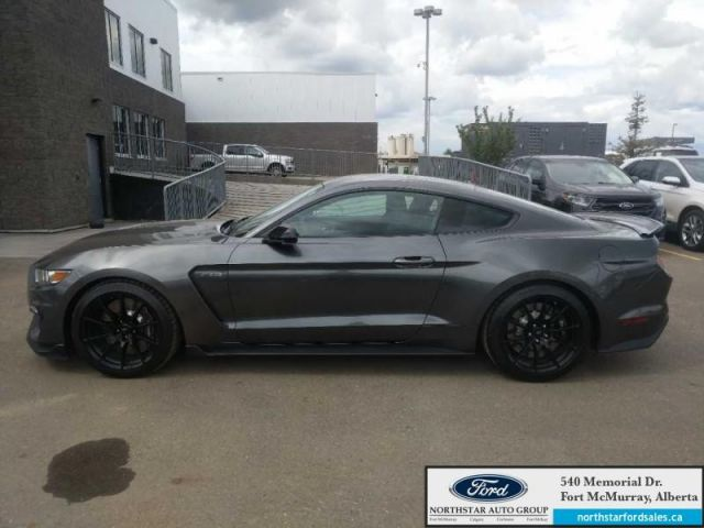 2016 Ford Mustang Shelby GT350|5.2L|526 HP|Track Pkg