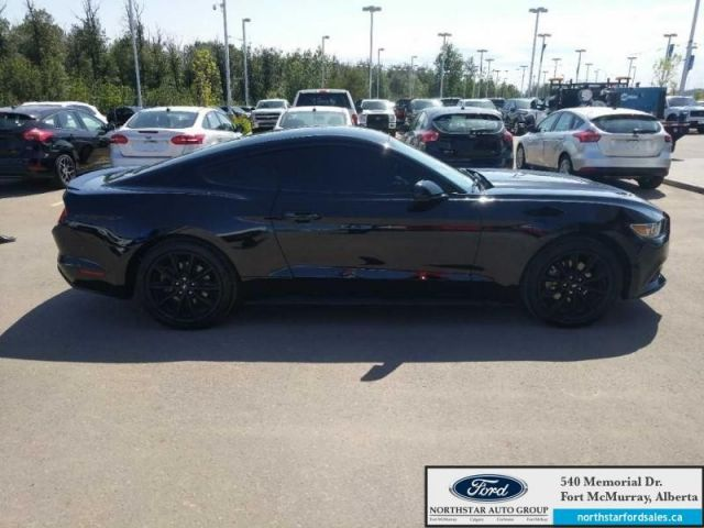 2016 Ford Mustang Coupe|2.3L|Security Pkg|Wheel/Side Stripe Pkg
