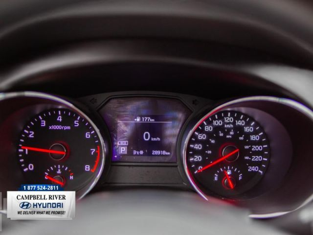 2019 Kia Sedona LX  Family Road Tripper!