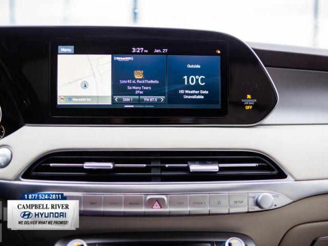 2020 Hyundai Palisade Ultimate AWD 7-Pass Colour