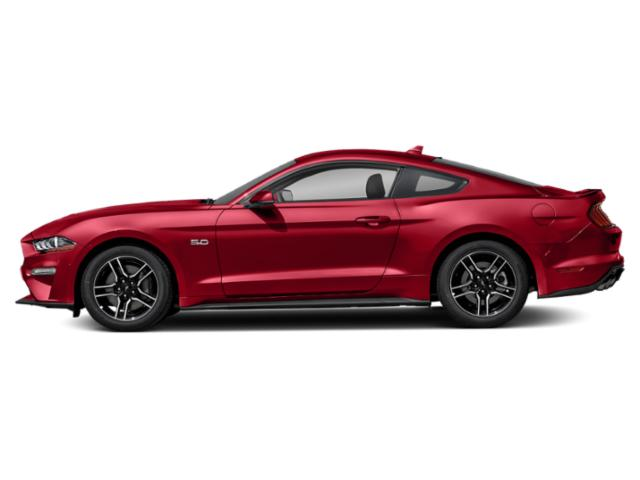 2021 Ford Mustang GT Premium  - $420 B/W