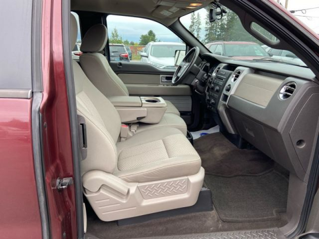 2009 Ford F-150 XLT  - Cruise - Running Boards
