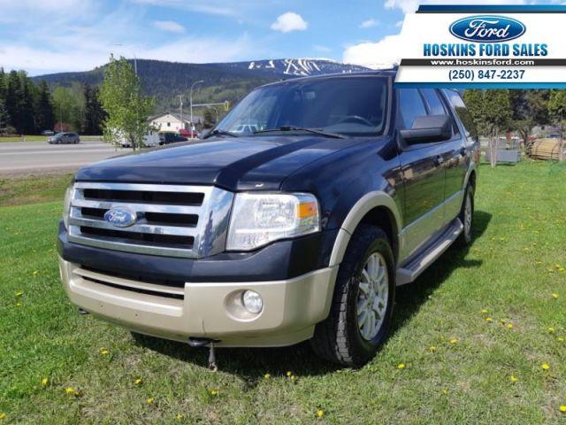 2010 Ford Expedition Eddie Bauer