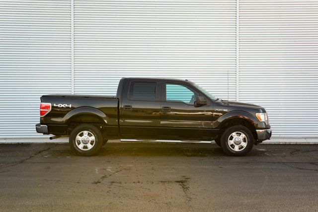 2010 Ford F-150 XLT 4x4 / Accident Free / Trailer Tow Pkg