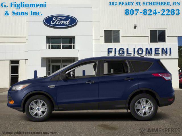 2013 Ford Escape SE  - Power Windows - Low Mileage