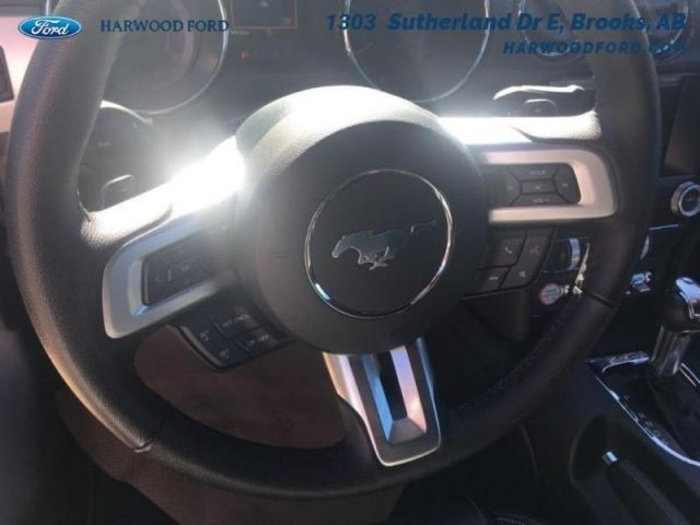 2015 Ford Mustang GT-NAVIGATION-234.35 B/W