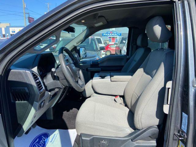 2016 Ford F-150 XLT  - Back Up Camera - Cloth Seats - $207 B/W