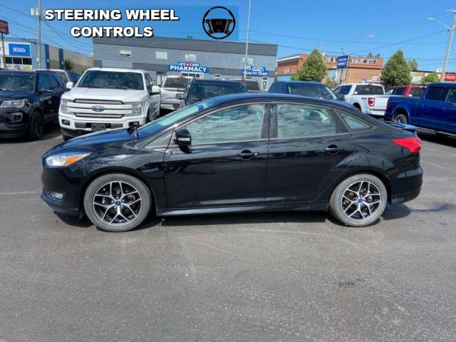 2016 Ford Focus SE  - Alloy Wheels - $83 B/W
