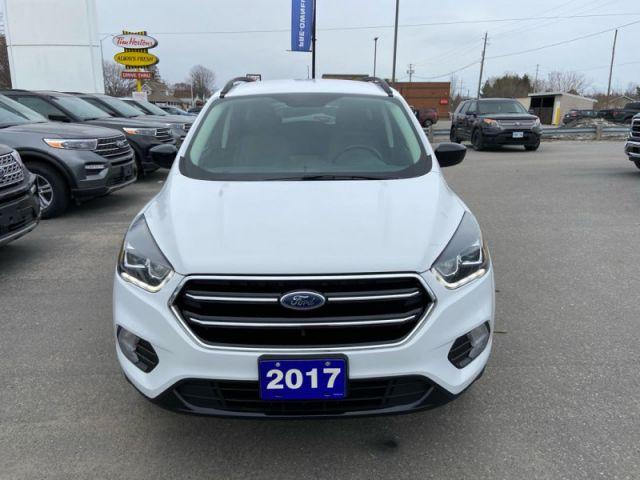 2017 Ford Escape SE  - Trailer Hitch - $133 B/W