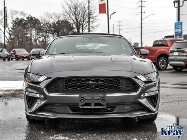 2018 Ford Mustang EcoBoost Fastback  - Certified