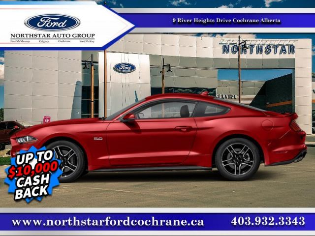 2019 Ford Mustang GT Premium Fastback  A STUNNING MUSTANG -  GT PREMIUM!