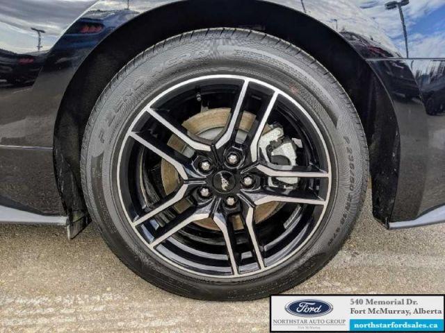 2019 Ford Mustang GT Coupe  |5.0L|Nav|Ford Safe & Smart Pkg