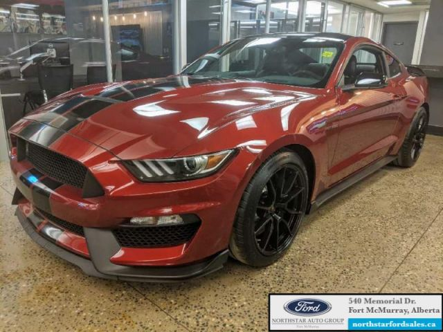 2019 Ford Mustang Shelby GT350 Fastback  NEW!