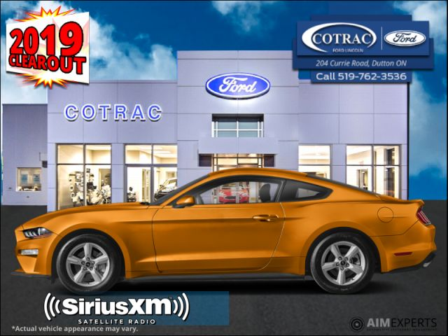 2019 Ford Mustang EcoBoost  - SiriusXM - $213 B/W