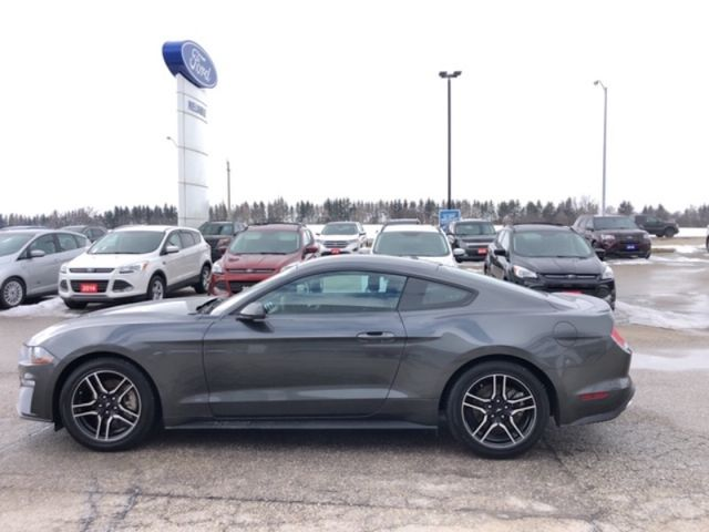 2019 Ford Mustang EcoBoost  - One owner - Local - $186 B/W