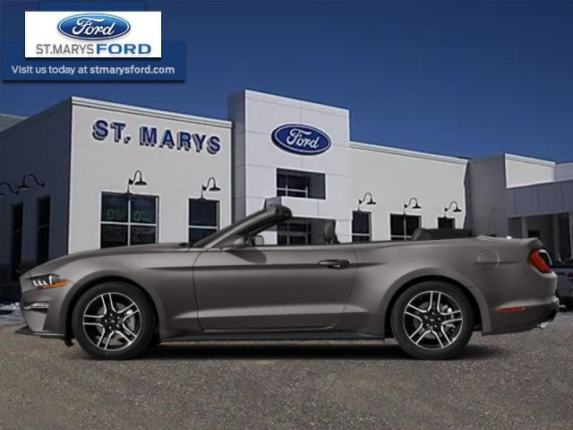 2019 Ford Mustang EcoBoost Premium  -  Leather Seats - $243 B/W