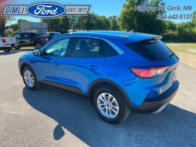 2020 Ford Escape SE 4WD  - Low Mileage