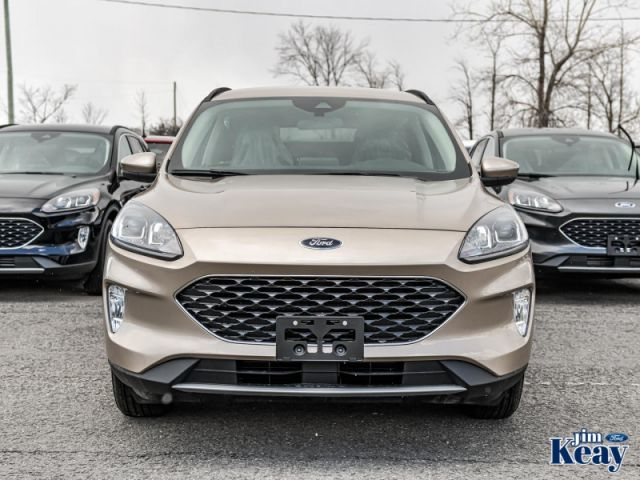 2020 Ford Escape SEL 4WD  - ActiveX Seats -  Power Liftgate