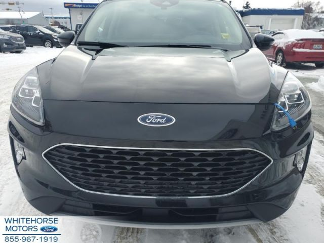 2020 Ford Escape Titanium  - Navigation -  Power Liftgate - $254 B/W