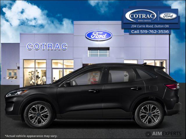 2021 Ford Escape SEL Hybrid AWD  - Sunroof - $244 B/W