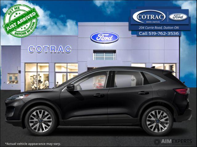 2021 Ford Escape Titanium Hybrid AWD  - Sunroof - $247 B/W