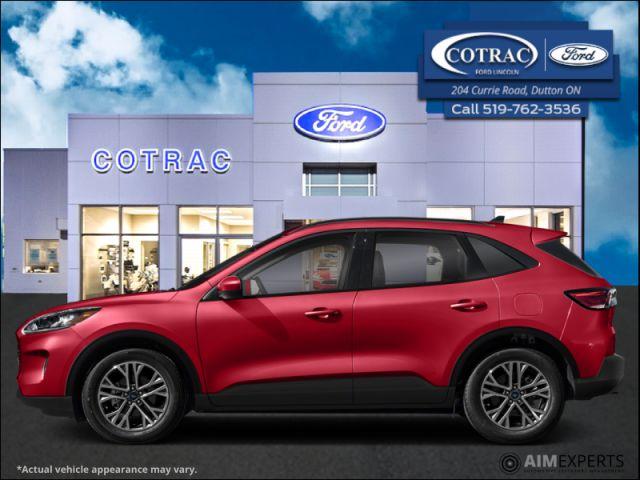 2021 Ford Escape SEL AWD  - $214 B/W
