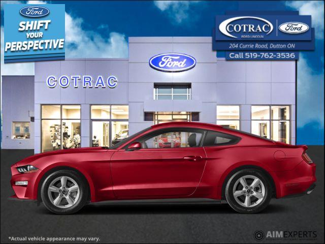 2021 Ford Mustang GT Premium  - $384 B/W