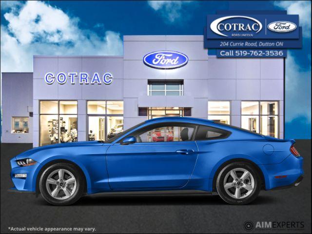 2021 Ford Mustang GT Premium  - $416 B/W